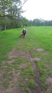 Youngest's turn to walk the dog.